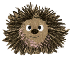 Ned, The Hedgehog